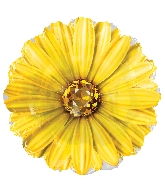 "18"" Yellow Rhinestone Daisy Foil Balloon"